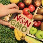 non-gmo-month-06315a77