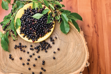 Natural Awakenings Try Maqui Berry For Dry Eyes